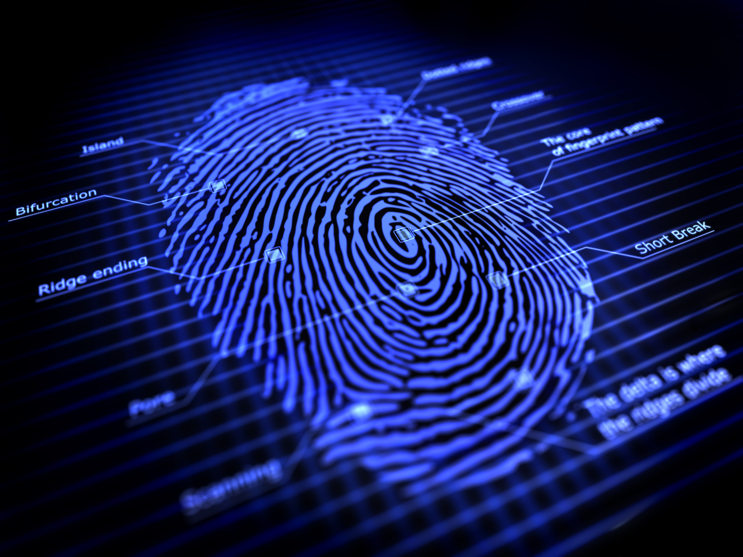 Image result for fingerprinting